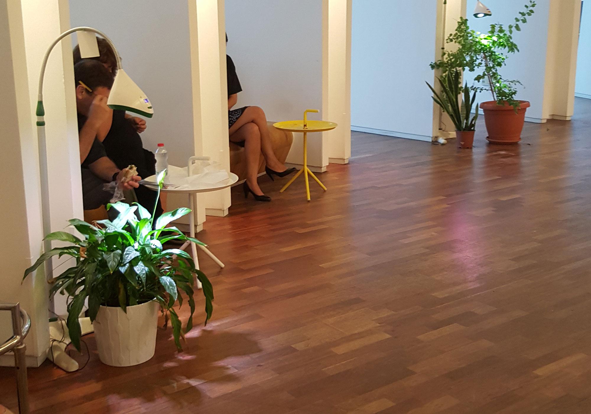 מנורה חכמה לגידול צמחים
