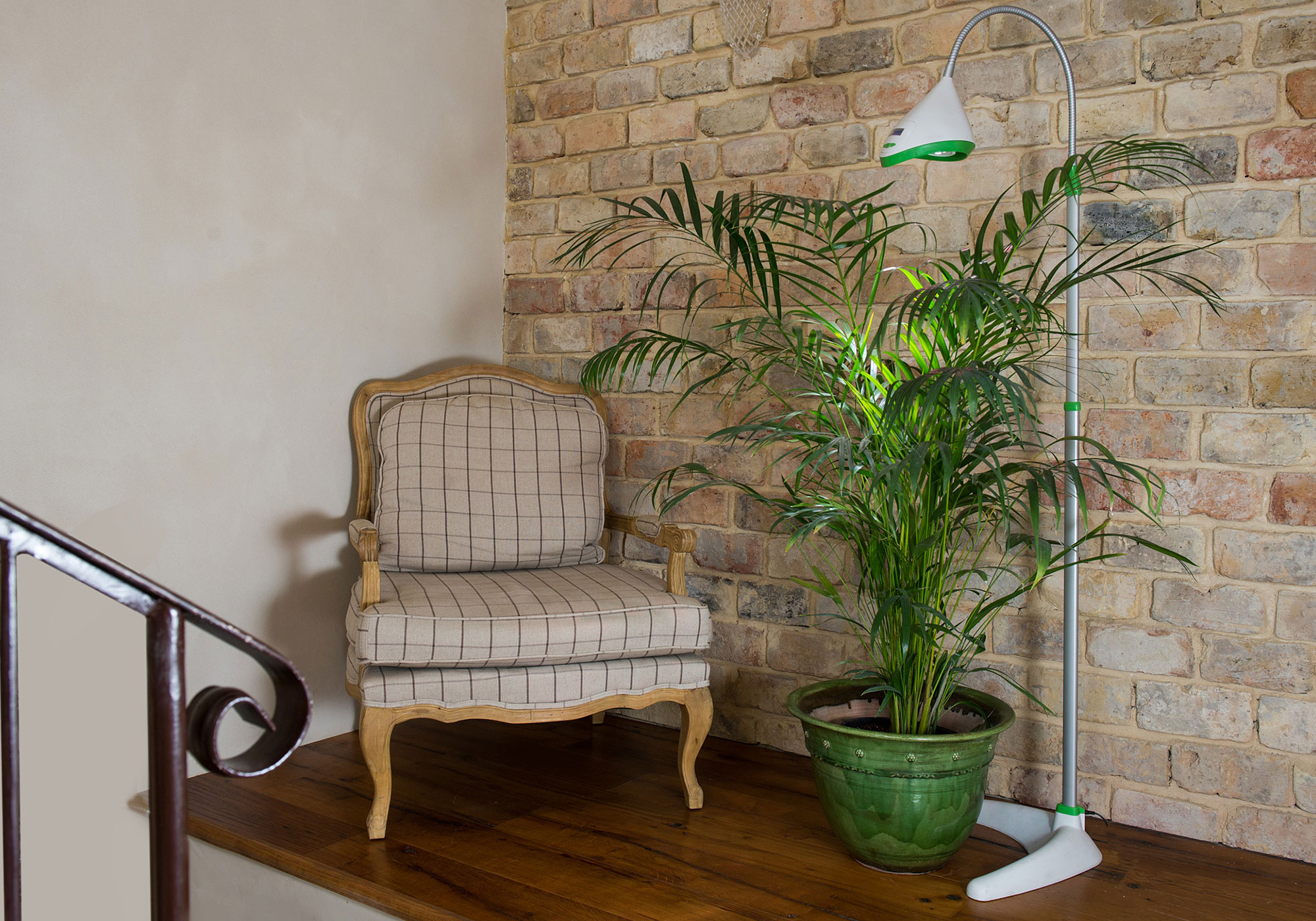 מנורה לגידול צמחים בבית