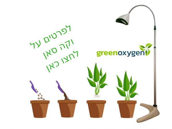 תאורה לצמחים וקה סאן - כל מה שצמח צריך