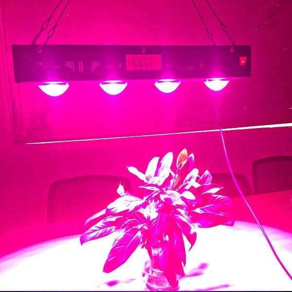 מנורת גידול 560W למגדלים מקצועיים וחובבים